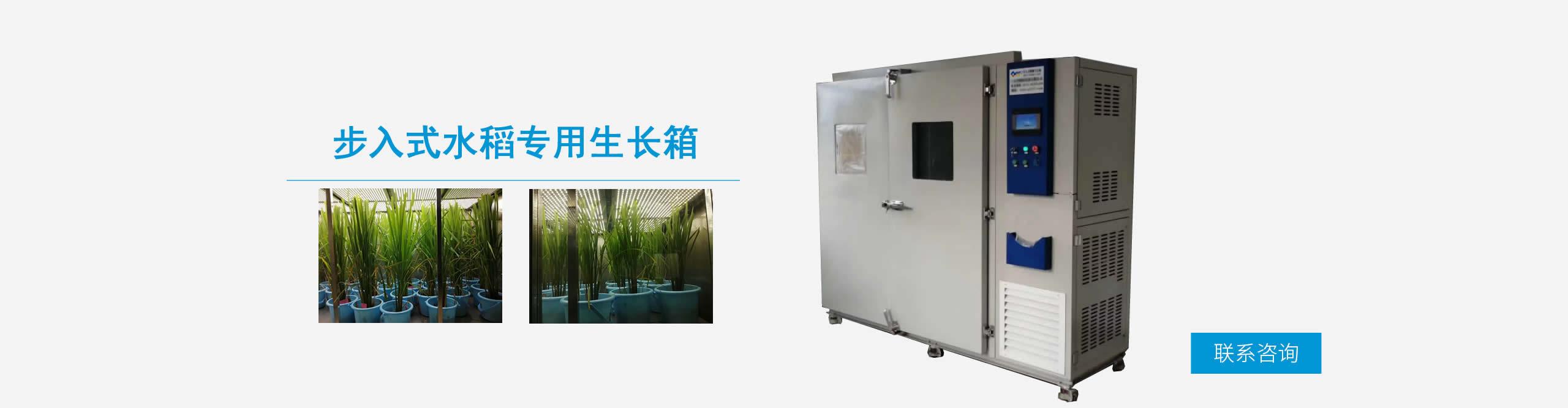 步入式水稻专用生长箱